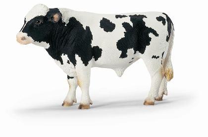 13632-holstein-bull616