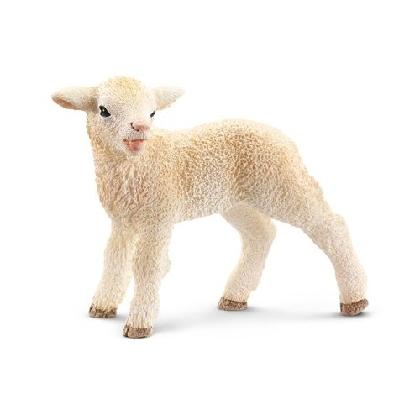 13744-lamb18
