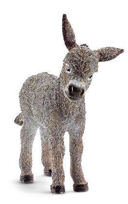 13746-donkey-foal