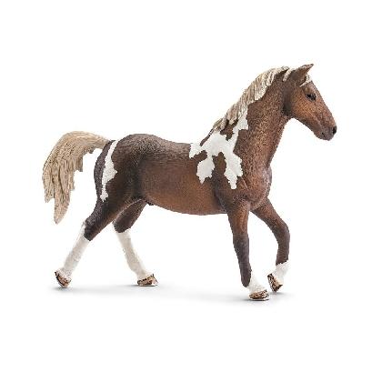 13756-trakehner-stallion19
