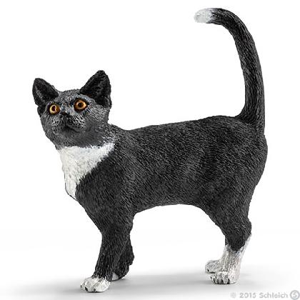 13770-cat-standing