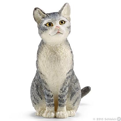 13771-cat-sitting