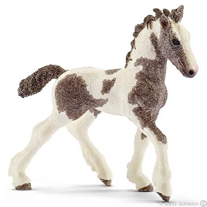 13774-tinker-foal