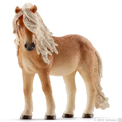 13790-icelandic-pony-mare