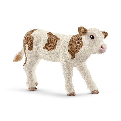 13802-simmental-calf
