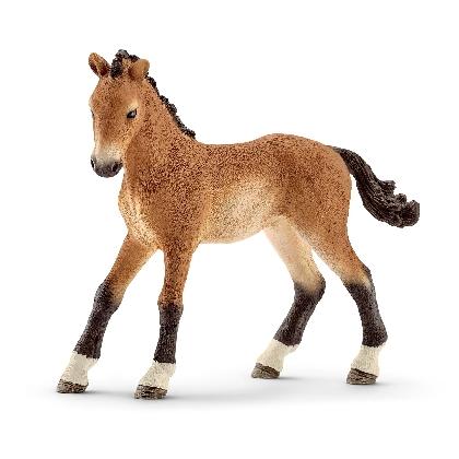 13804-tennessee-walker-foal