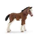 13810 Clydesdale Foal