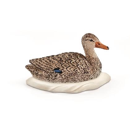 13823-duck18
