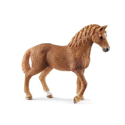 13852-quarter-horse-mare