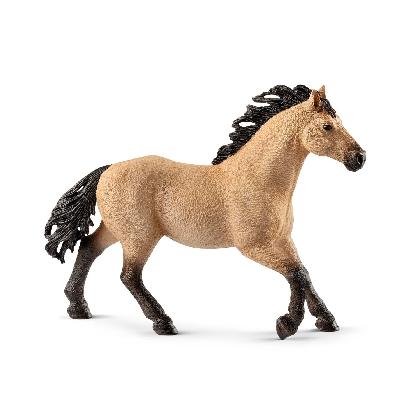 13853-quarter-horse-stallion