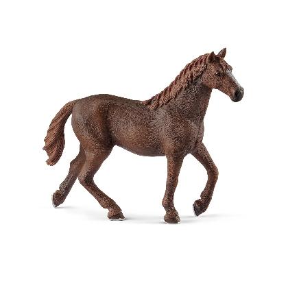 13855-english-thoroughbred-mare