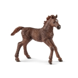 13857 English Thoroughbred Foal
