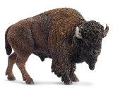 14714 American Bison*19