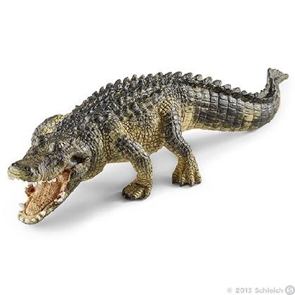 14727-alligator