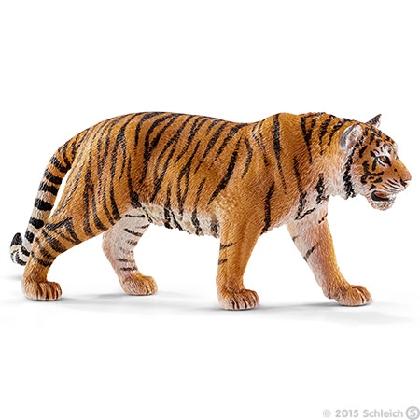 14729-tiger