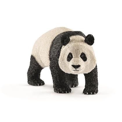 14772-giant-panda-male