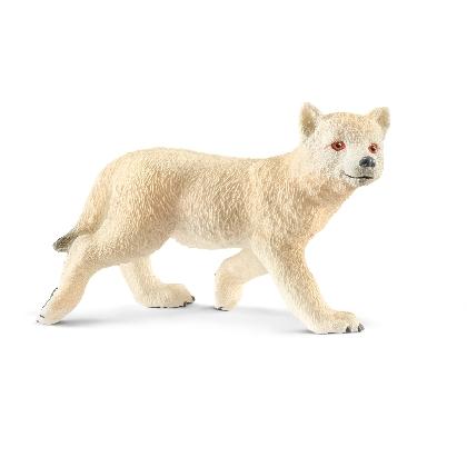 14804-arctic-wolf-cub