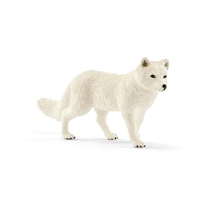 14805-arctic-fox