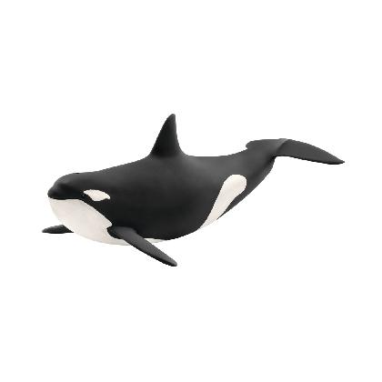 14807-killer-whale