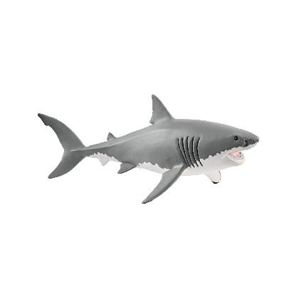 14809-great-white-shark