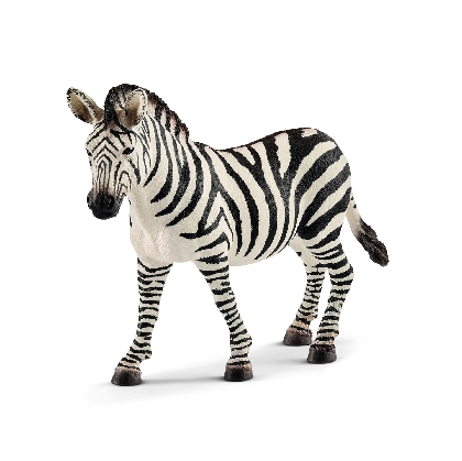 14810-zebra-female