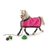 41447 Arab Mare with Blanket *19