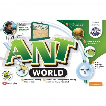 ant-world