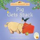 fyt-mini-pig-gets-stuck