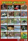 poster-british-wildlife-2